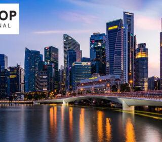 Company Secretary Services Singapore, Local Director